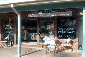 GreyDolphins-Takeaway